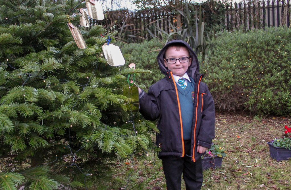 Odhran Hughes ties a wish to the wishing tree in the newly launched Garden of Hope and Reflection in Upper Springfield